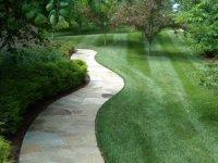 Lawn Maintenance 4