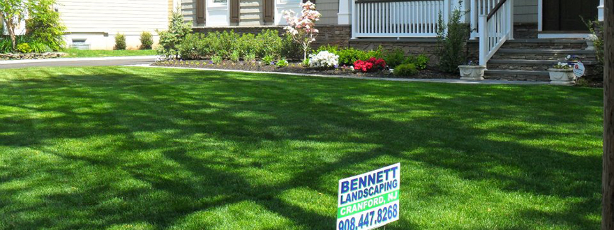 lawnmaintenance-westfield-1